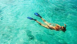 Miami: Four-Hour Guided Snorkel Tour