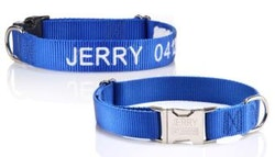 Personalised pet collar, $16.
