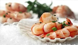 Southport: Five-Course Seafood Degustation