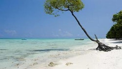 India: Six-Day Andaman Beach Tour!