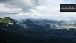 Gold Coast Hinterland: escape for