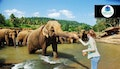 Sri Lanka: 10 day package