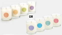 4x Enviro Candle Co. soy