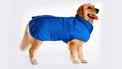 Weatherproof dog jacket, just $24
